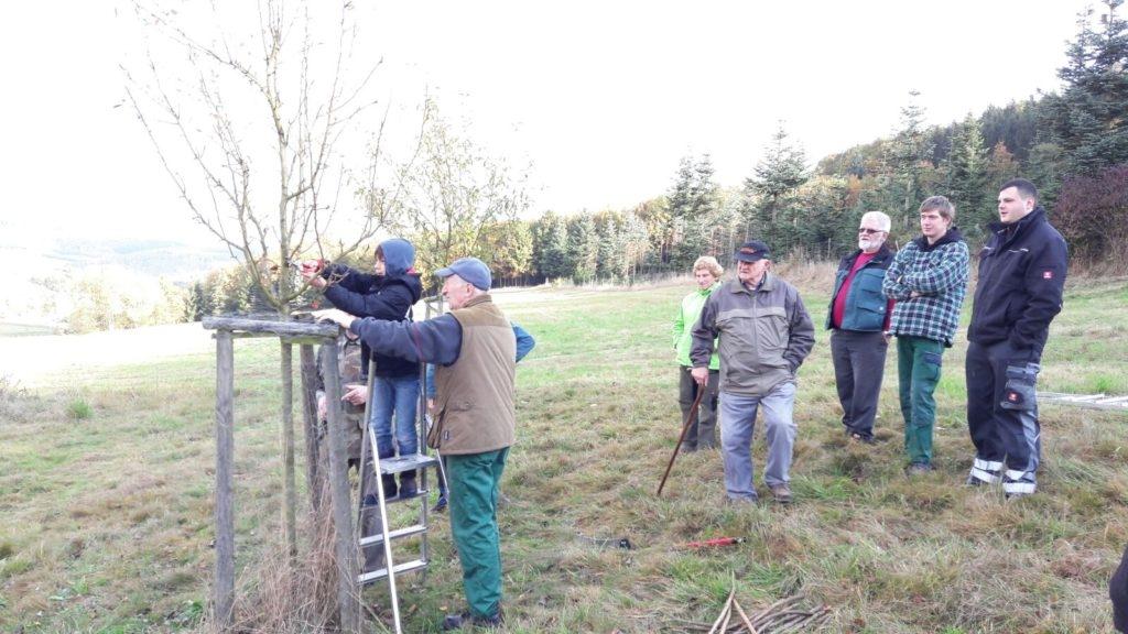 Baumschnittkurs des Gartenbauvereins